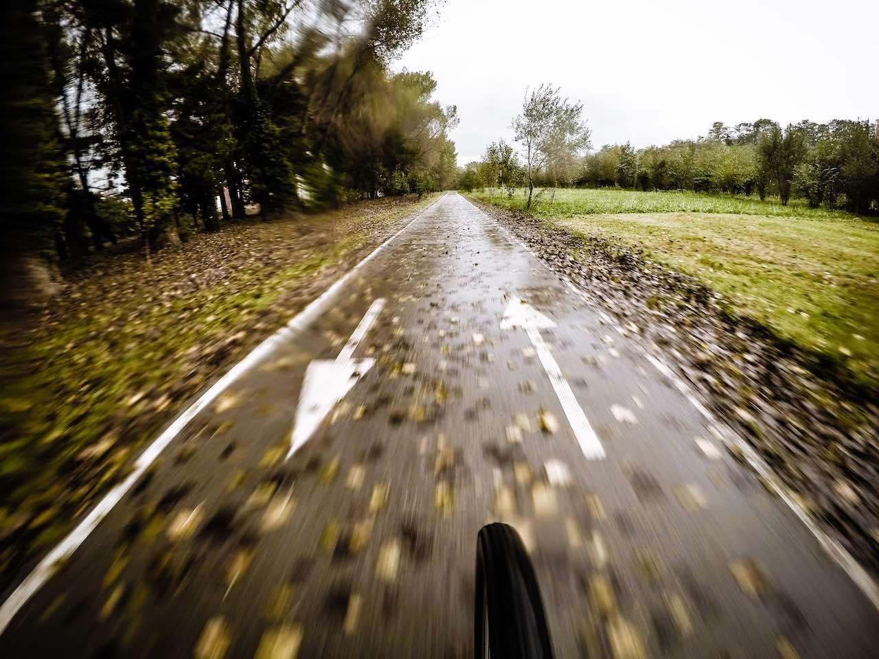 Paseos en bicicleta (Foto de Luis Marina)